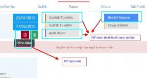pdfrapor_1